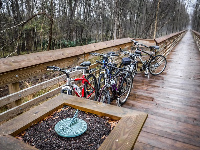 Biking the Palmetto Trail with Lowcountry Unfiltered