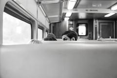 train  (由  i_escoffery
