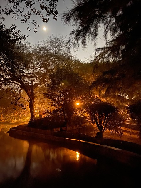 City Walk - Around the Lake, Lodhi Garden
