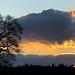 Wheathampstead Sunset