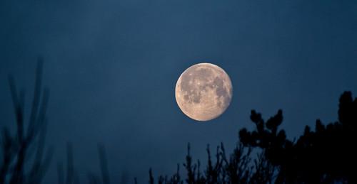 Moon IMG_5393