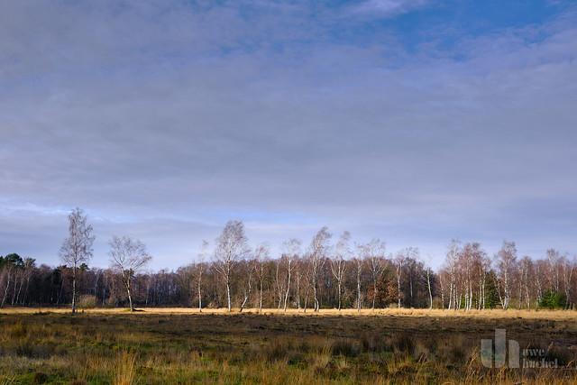 Teverner Heide