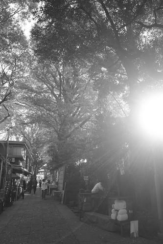 tokyo monochrome 67
