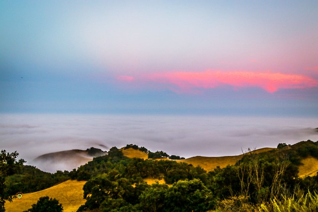 Here a shot at #sunrise above the fog on @highway1discoveryroute @visitcalifornia south of #bigsur from early fall 2019  #teamcanon #smugmug #california #centralcoast #highwayone #sanluisobispo #naturephotography #landscapephotography #ruralphotography #t