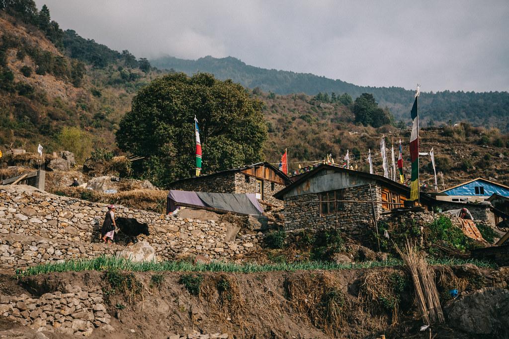 Nepalin vaellus Langtang