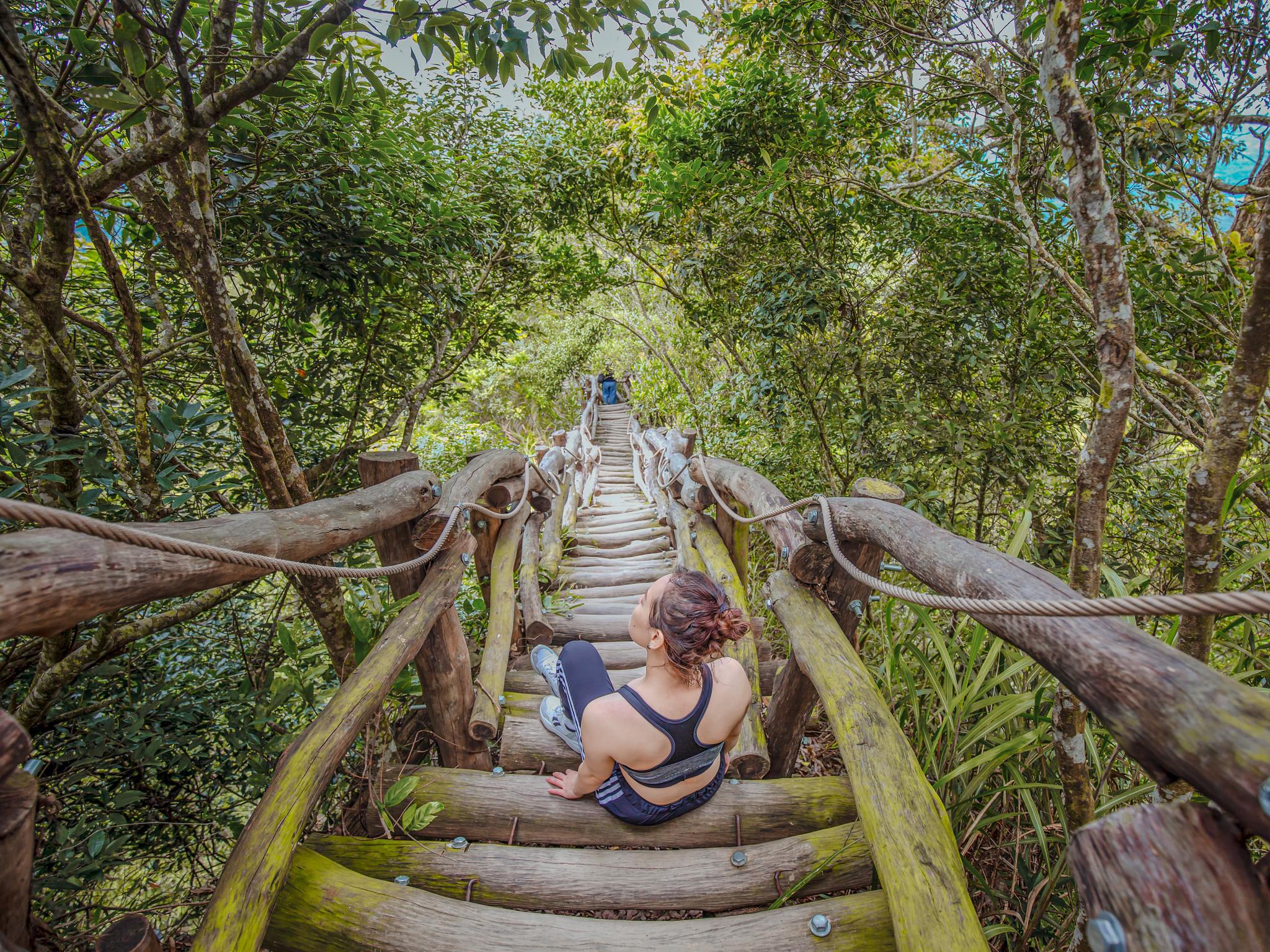 大坑步道 | 台中登山景點大坑4號步道|挑戰自我台版萬里長城