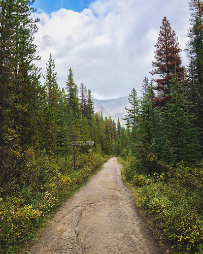 Jasper National Park | by traveleatenjoyrepeat