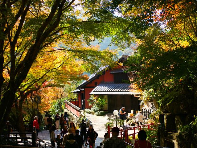 233-Japan-Nanzoin temple