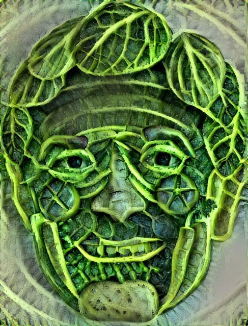 Cabbage Face