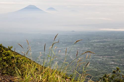 nikon asia asie southeastasia asiedusudest indonesia java merapi volcano volcan landscape paysage nature outdoors outdoor pascalboegli fog brume brouillard d300 mist 123faves getty indonésie