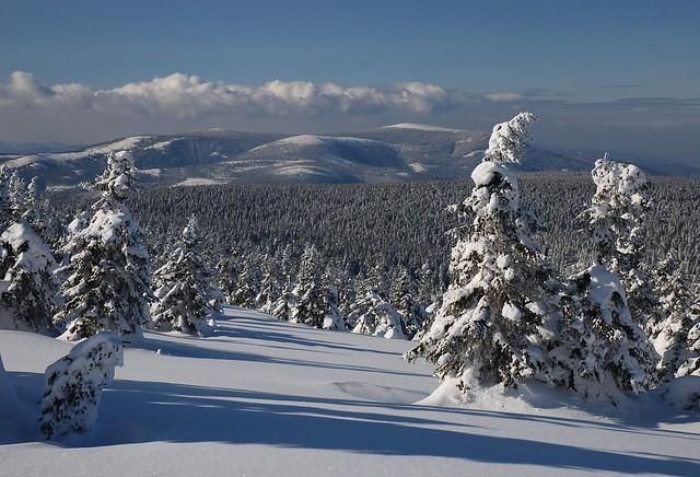 Main ridge of Jeseníky Mts. from the slope Praděd Mt.
