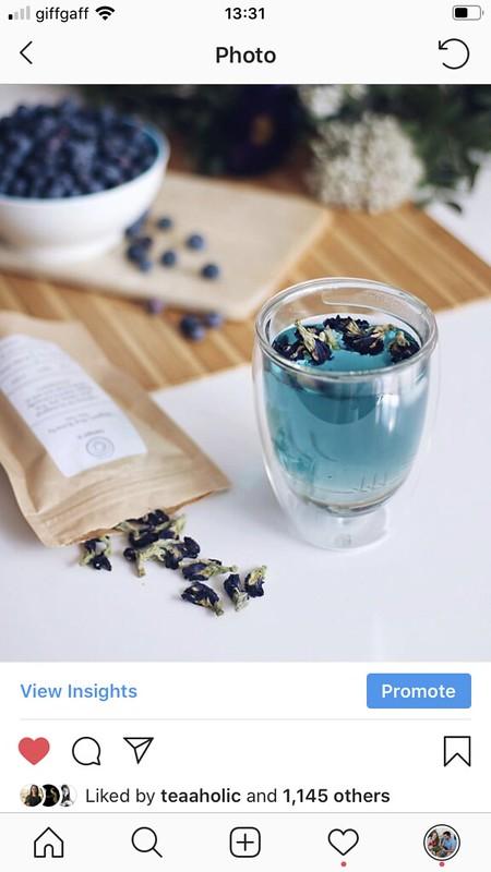 teaprouk butterfly pea tea