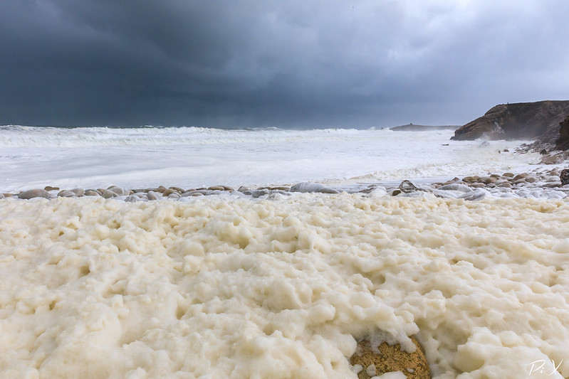 PiX  - Eric Gillard | Écume sur la côte sauvage