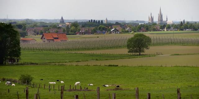 Countryside pastorale, near Ieper/Ypres, West Flanders, Belgium