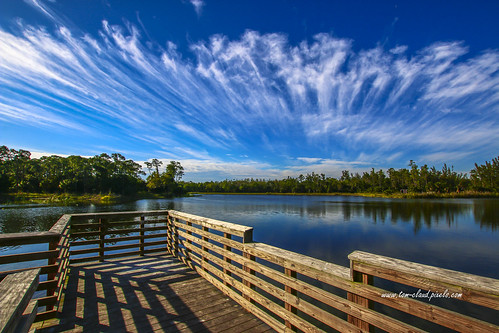clouds wispy streak streaking sky bluesky weather deck observationdeck nature mothernature lake water trees reflection shadows cypresscreek naturalarea cypressctreeknaturalarea jupiter florida usalandscape seascape