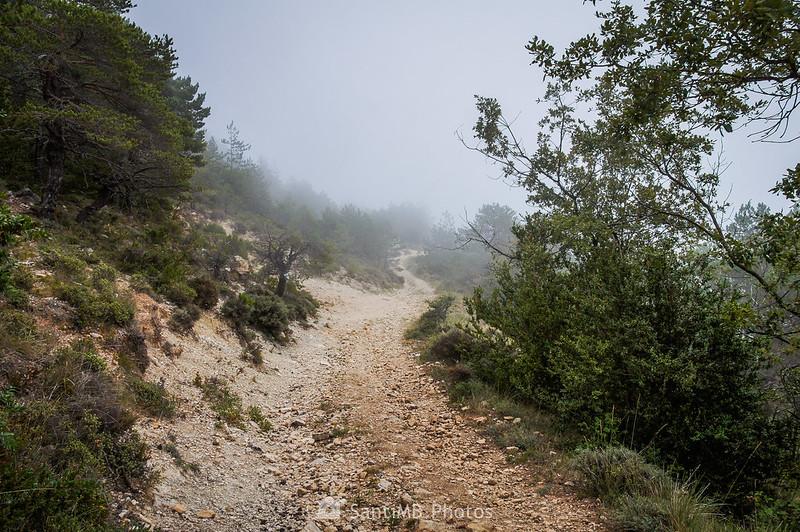 Camí dels Motllats en dirección a La Mussara