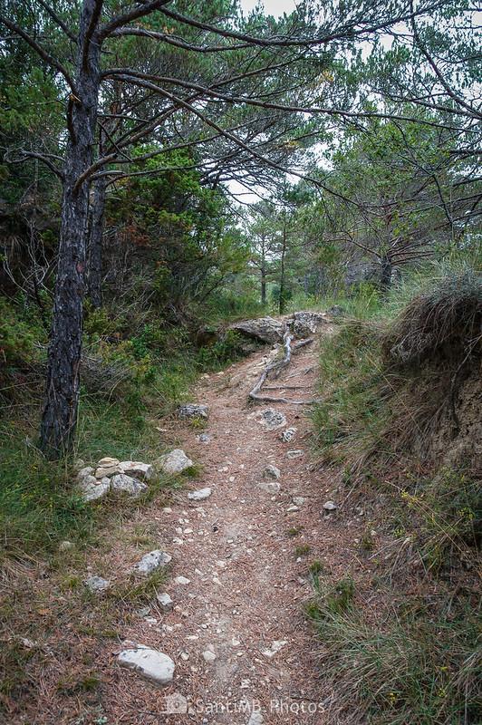 Camino a los Avencs de la Febró