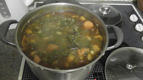 fish soup Jan 20 (1)