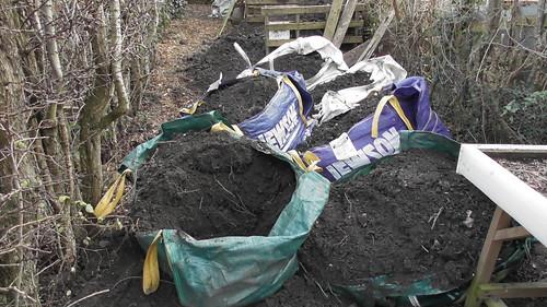 top soil Jan 20 (2)