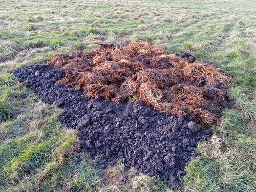 topsoil and manure Jan 20 (2)