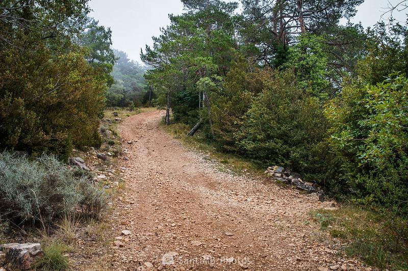 El GR-7 a la altura del Bosc de l'Agustenc