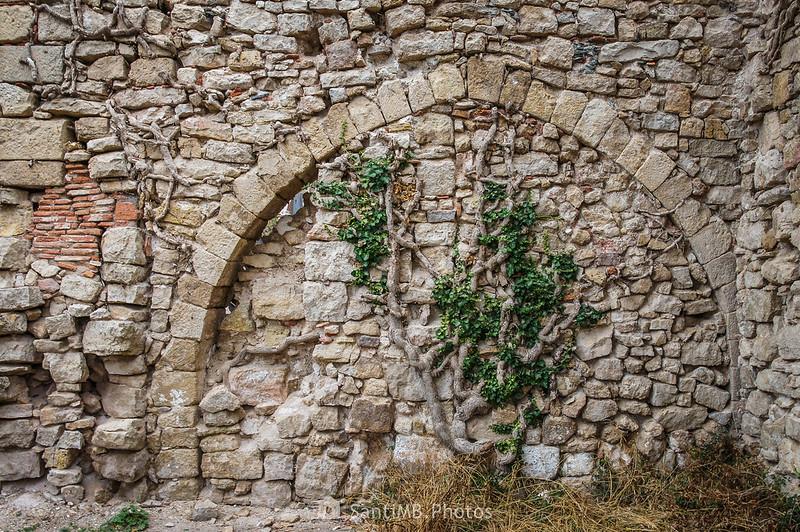 Arco medieval en la fachada oriental de la iglesia de la Mussara