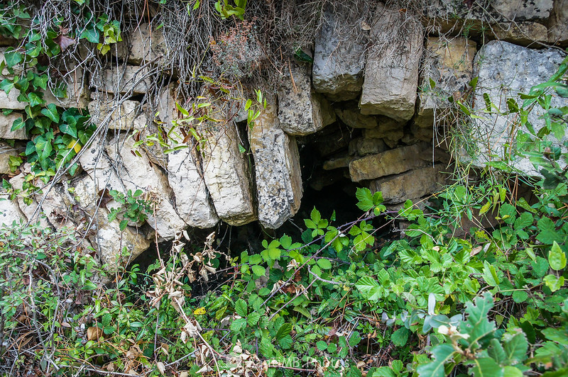 Aljibe o fuente junto al Camí de la Font en la Mussara