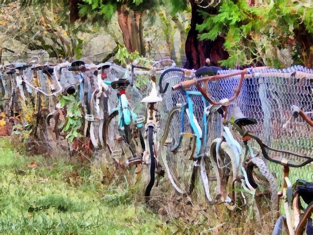 Corvallis Bicycle Fence Photo taken Approximately December 2014