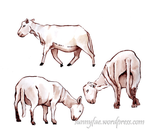 sheeps drawn in brown ink