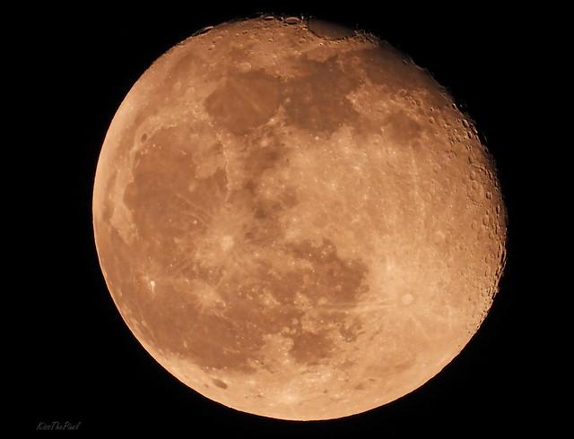The Moon ~ Nikon Coolpix P1000