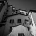OmoGirando il quartiere Flaminio