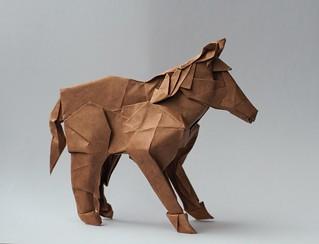 Shetland Pony 1.0