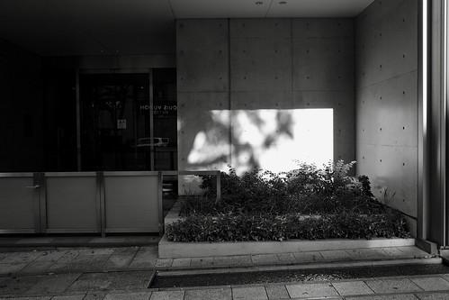 tokyo monochrome 71