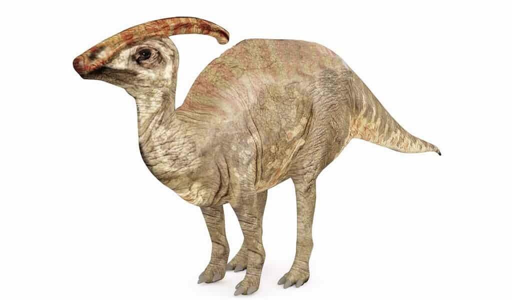 les-dinosaures-à-bec-de-canard-avaient-la-peau-grise