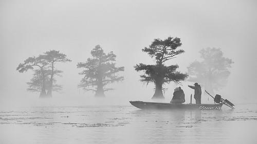 Misty morning boat tour. Caddo Lake