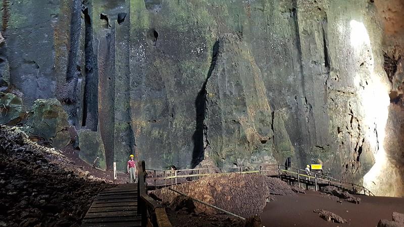 Gomantong Cave