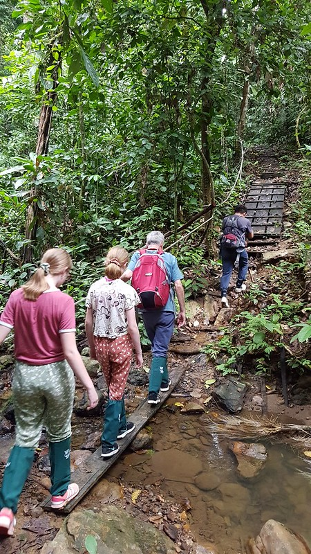 Into the Danum Valley