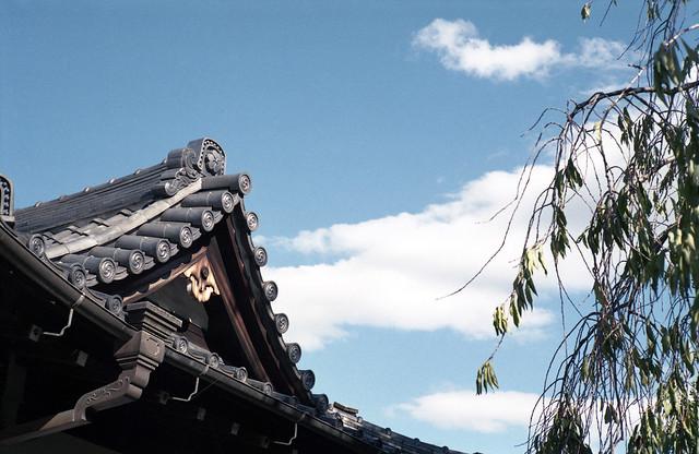 A scene in Yanaka town,Tokyo 2019/10 No.3(taken by film camera).