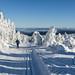 Lyžařské stopy pod Velkou Deštnou, foto: Jan Hocek