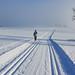 Lyžařské stopy u Blatin, foto: Jan Hocek
