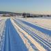 Lyžařské stopy u Fryšavy, foto: Jan Hocek