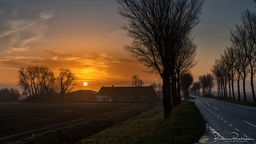 Sunrise Farm Smalle Blokweg