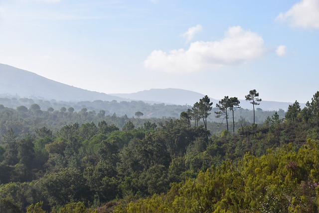 In the heart of Arrabida Natural Park, Setubal, Portugal