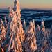 Pohled z Anenského vrchu k Bukové hoře, foto: Jan Hocek