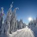 Lyžařské trasy Pod Homolí, foto: Jan Hocek