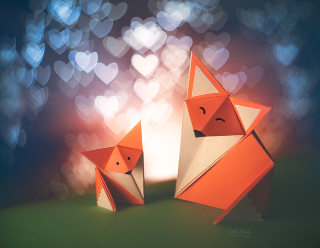 Little Foxes ♥