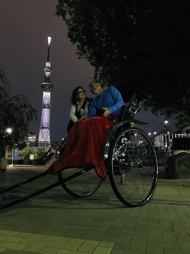 Rickshaw ride view of Skytree. From History Comes Alive in Tokyo
