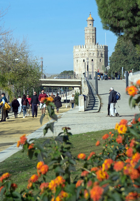 View towards the Torre del Oro