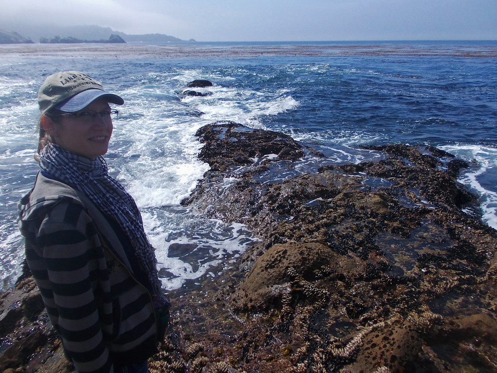 Best Coastal Hikes In California: Point Lobos State Natural Reserve, CA, USA