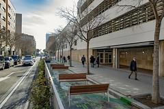 dl., 13/01/2020 - 11:11 - Barcelona 13.01.2020 L'alcaldessa de Bcn, Ada Colau, presenta un programa d'actuacions per protegir els entorns dels centres educatius de Barcelona.    Foto Laura Guerrero/Ajuntament de Bcn.